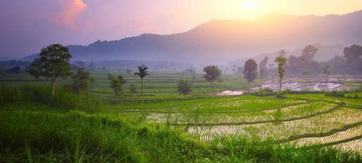 Vliegtickets Indonesië