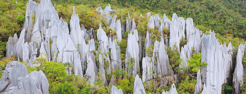 Gunung Mulu National Park | Tips & reviews | 27Vakantiedagen