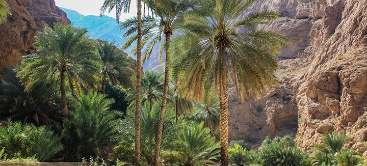 Reisaanbiedingen Oman