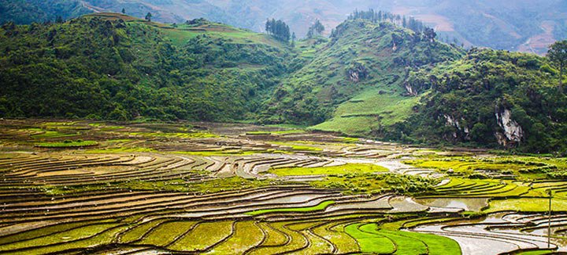 Reisaanbiedingen Vietnam