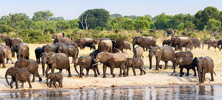 Reisaanbiedingen Zimbabwe