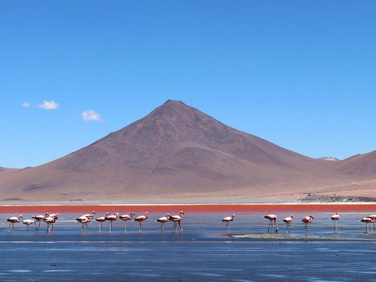 Alle hoogtepunten van Bolivia in een reis