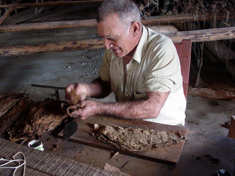 Sigaren roken Cuban style