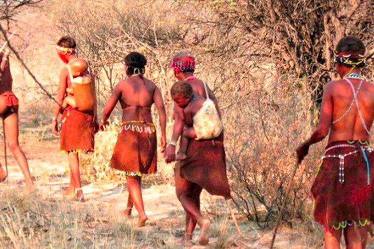 Bij de Bushman van de Kalahari