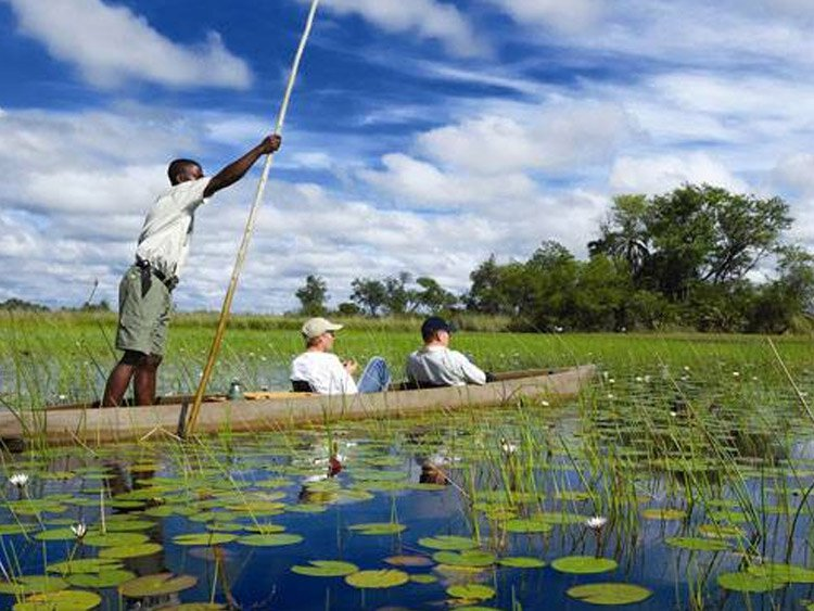 Kampeersafari Namibië, Botswana & Zimbabwe