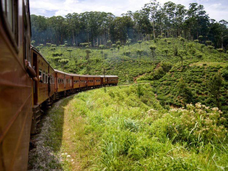 Sri Lanka rondreis lokaal geregeld per auto met chauffeur