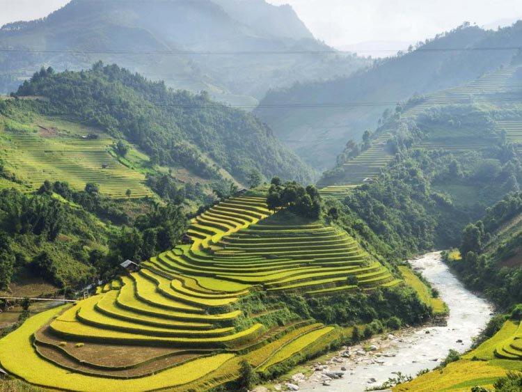 Original Vietnam