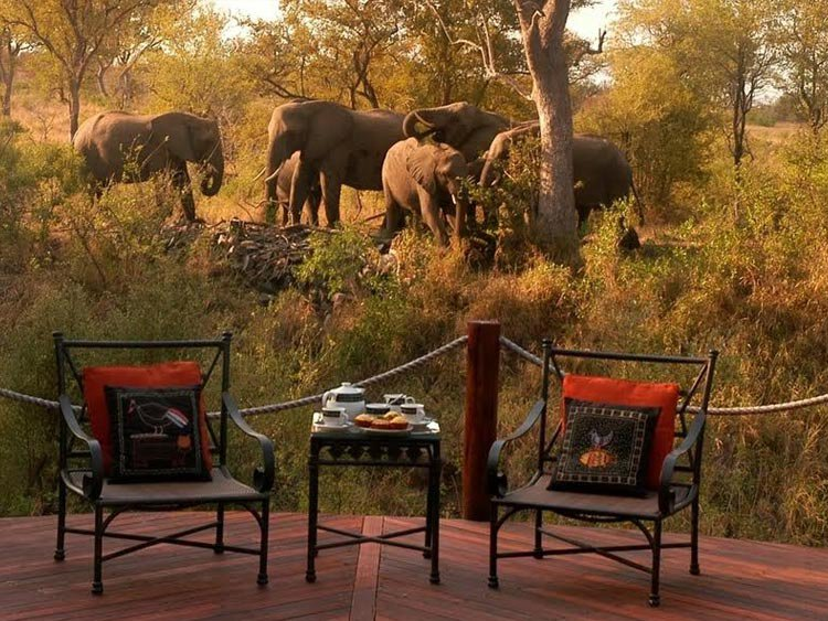 Rondreis Country House en Safari Lodge
