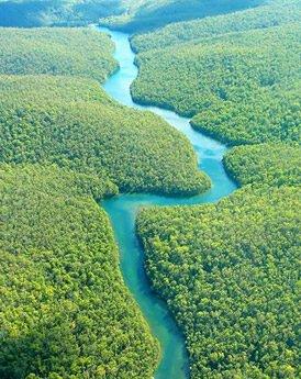 Manaus & de Amazone