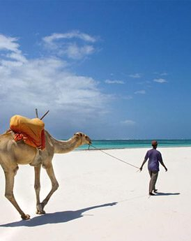 Oostkust Kenia