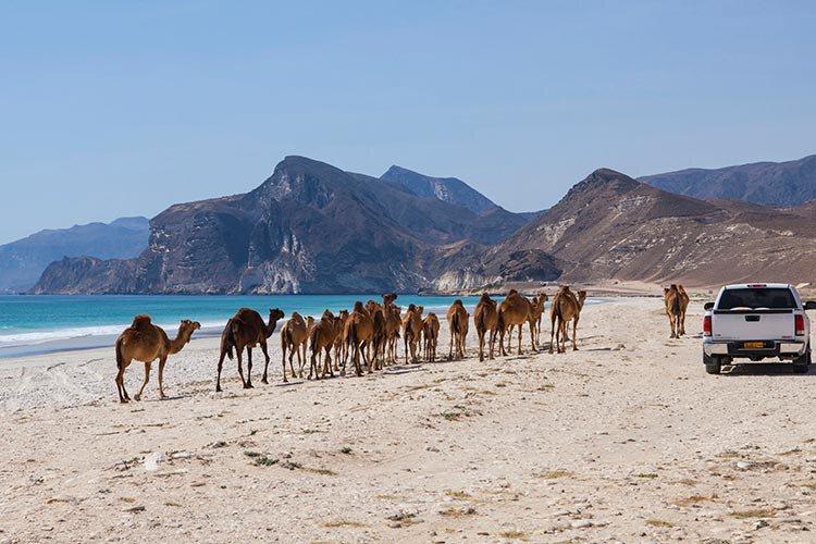 Eilanden Oman