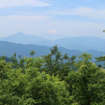 Net buiten de stad, uitzicht op mount fuji