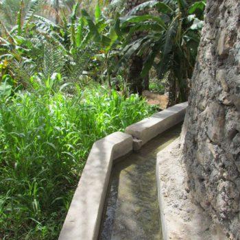 Tuinen met aflaj kanaaltjes
