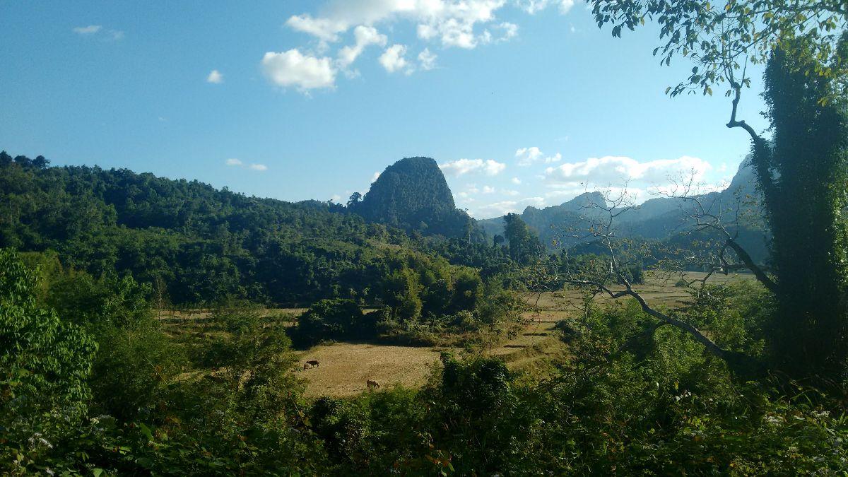 Wandeling omgeving Muang Ngoi
