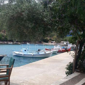 Haven van Steni vela vanaf terras Kostas