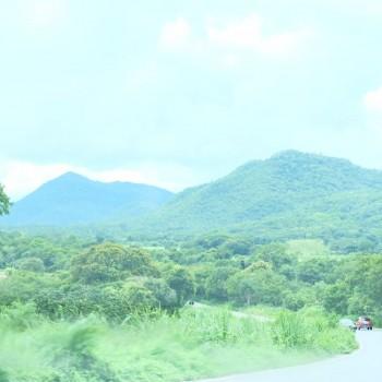 Prachtige uitzichten. Rijdend door de Pantanal