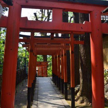 Torii poort in Ueno park