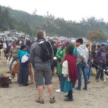 zaterdagse dierenmarkt