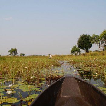 In een mokoro door de delta