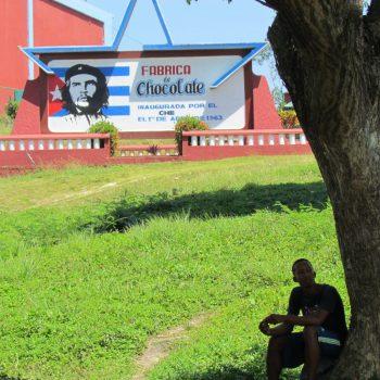 De cacao fabriek