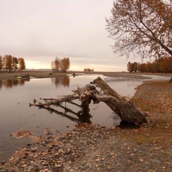 Mooie herfstkleuren bij een rivier