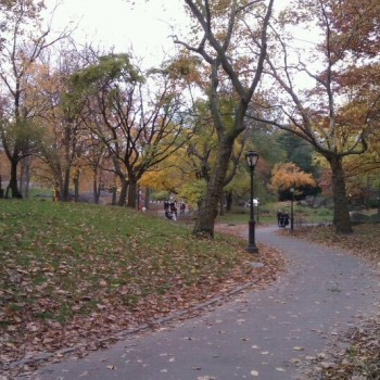 Central park in herfstkleuren