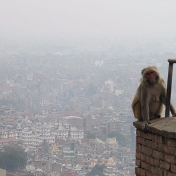 Swayambhunath - uitzicht op Kathmandu