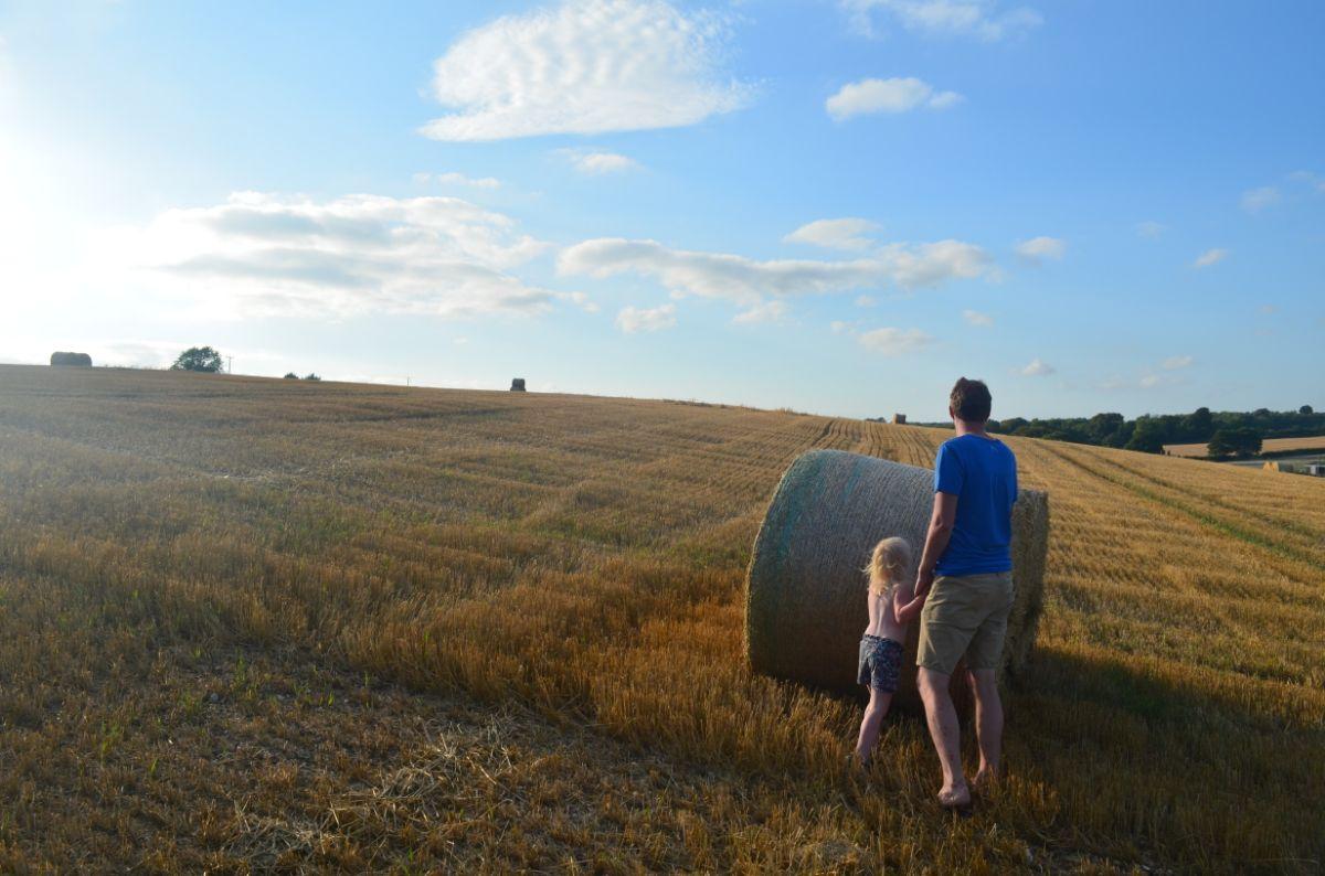 Typisch landschap in Dorset