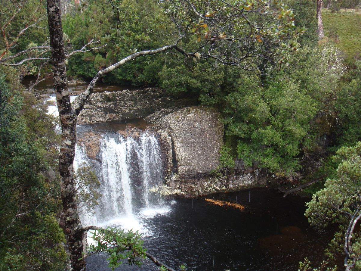 Natuurreservaat Launceston
