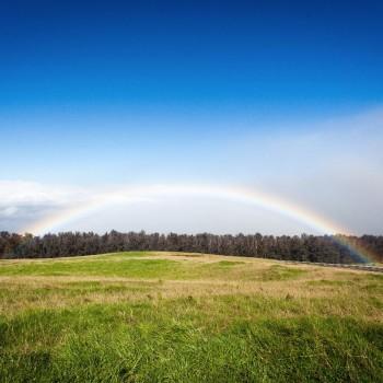 Het land van de regenbogen!