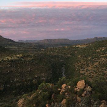 Bultfontein