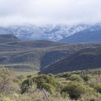de mooie streek rond Stellenbosch