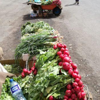 Lokale verkoop van enorme radijzen