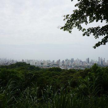 Uitzicht over de stad vanuit natuurpark