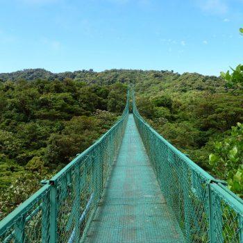 Canopywalk over bruggen in Monteverde