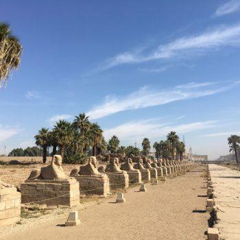 De opgravingen van Luxor zelf