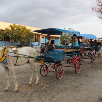 paardenkoetsjes in Bayamo