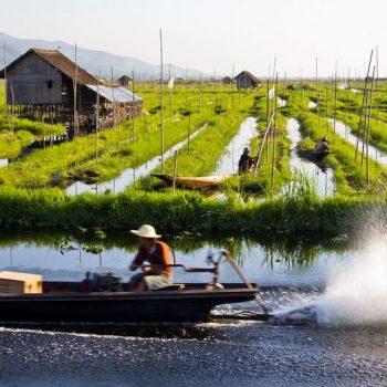 Drijvende tuinen bij Maing Thauk, Inle Lake