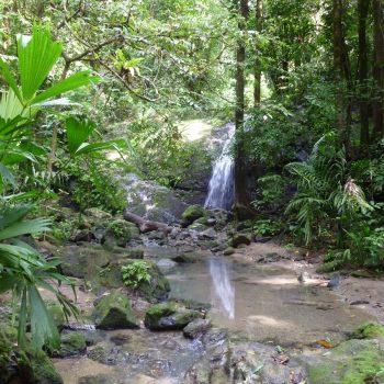 Waterval in Manuel Antonio National Park