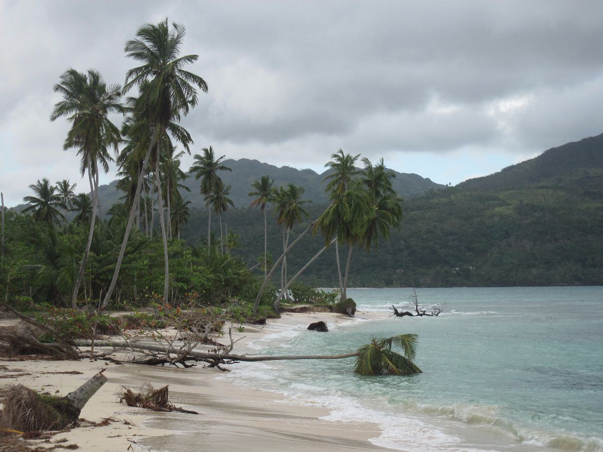 Playa Rincón, Samaná