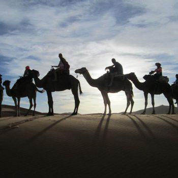 Een tocht door de woestijn