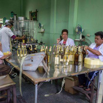 Dames aan het werk in de Guajabita fabriek