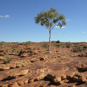 Outback (Red Centre) & Alice Springs