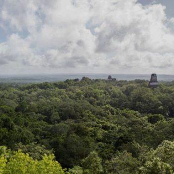 Uitzicht vanaf tempel IV