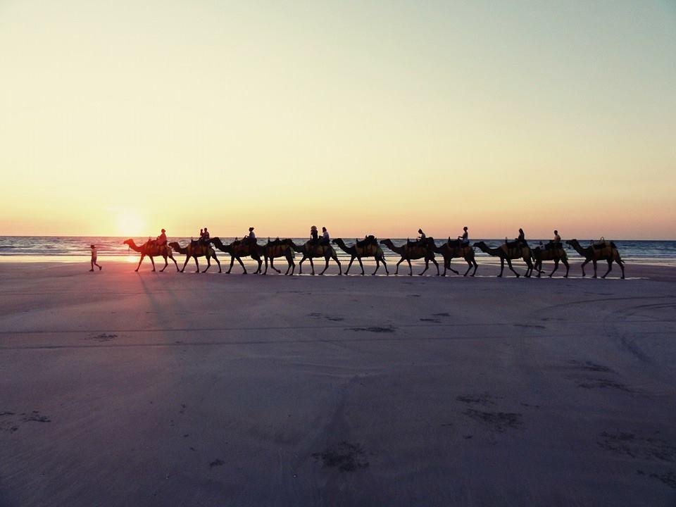 Kamelentocht in Broome