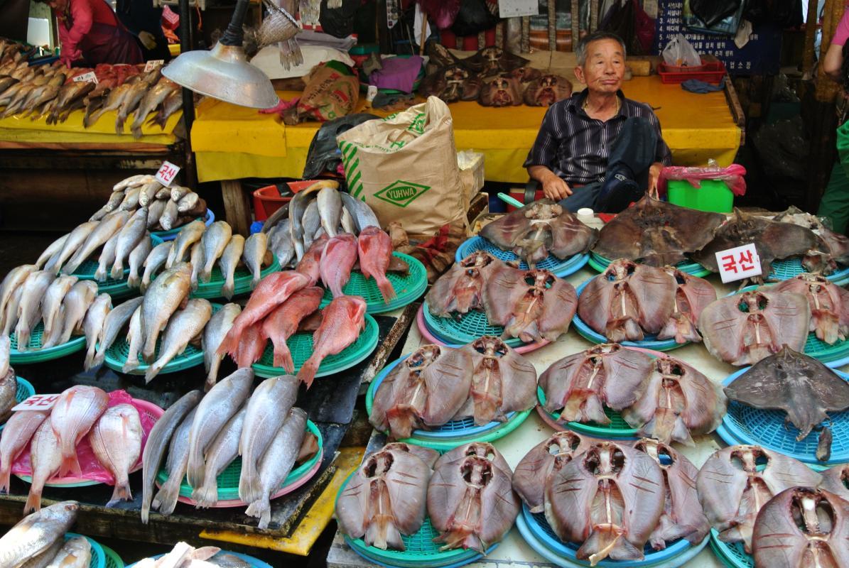 Vismarkt van Busan