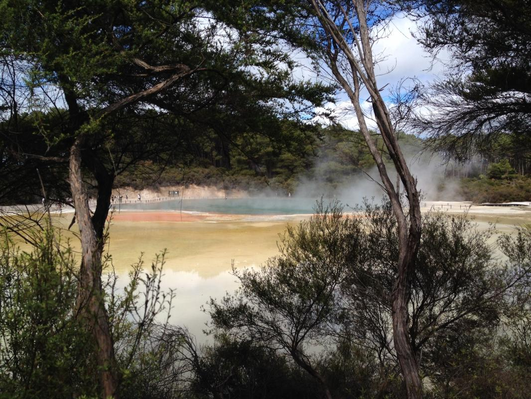 Champagne Pool, Rotorua, Noordereiland