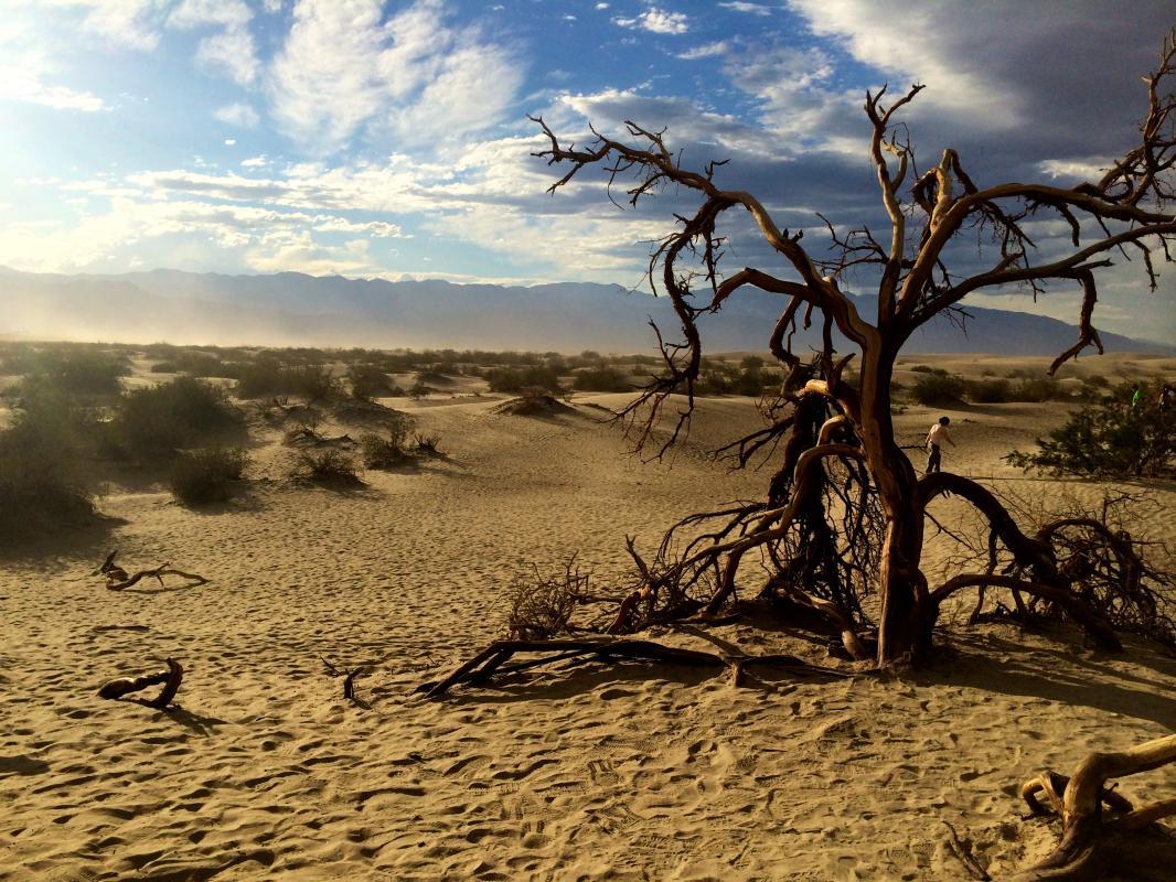 Sanddunes @ Death Valley
