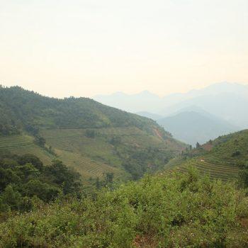 Een van de vele uitzichten op de rijstvelden in Sapa