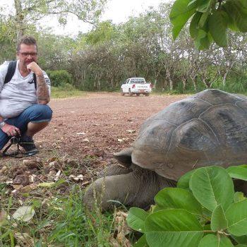 reuzeschildpadden op de Galapagos